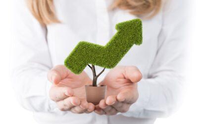 Investissement vert : le guide complet